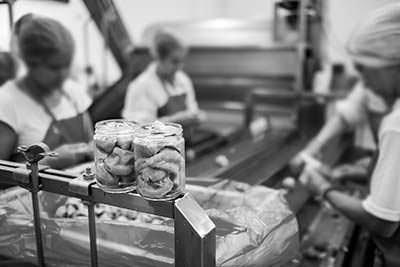 producción de alcachofa
